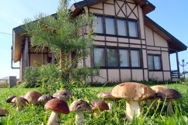 Ostrov Guesthouse