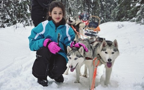 dog sledding in Karelia