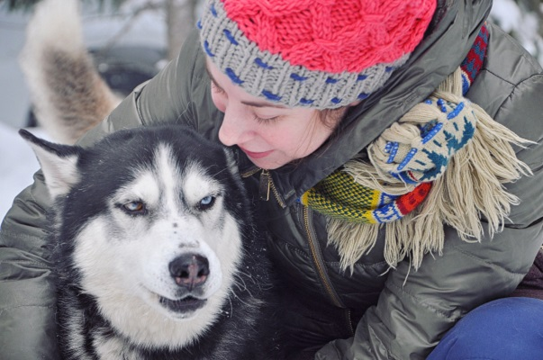 dog sled tour in karelia